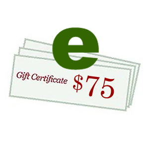 223 0593 - $75.00 Cyberguys E-Gift Certificate - is no longer available at Cyberguys.com