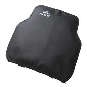 103 0117 - JAZZ RX BACK CUSHION, INFLATABLE, BLACK/BLUE - is no longer available at Cyberguys.com